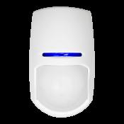 Detectors (0)